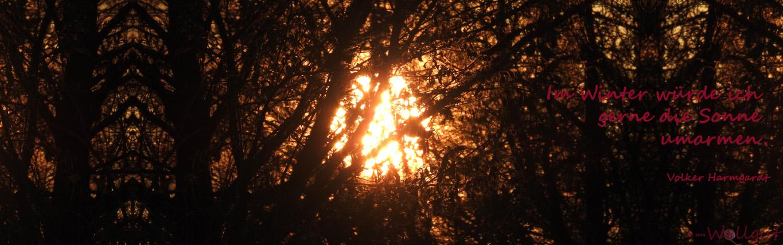Banner Sonnenuntergang